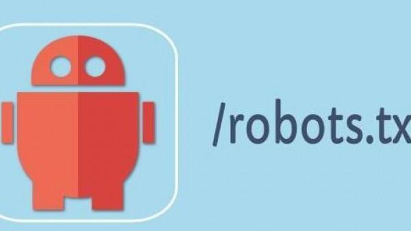 网站优化robots.txt的原理与设置