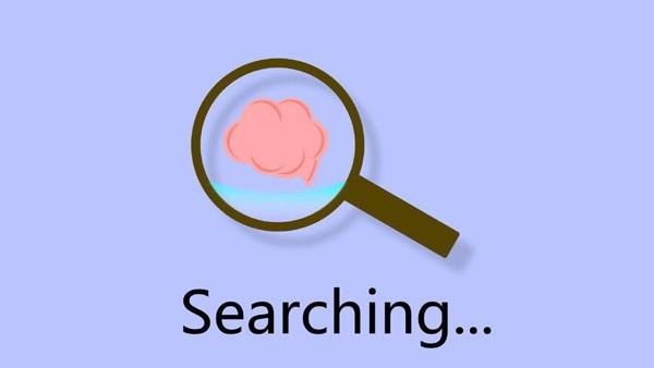 学习优化技巧,应先了解搜索引擎原理