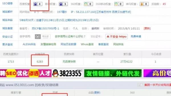 无极4注册seo寄生虫优化案例